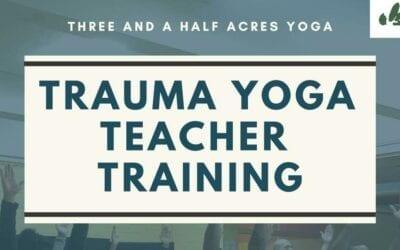 Trauma Yoga Teacher Training 2019
