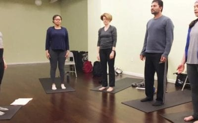 TRAUMA-INFORMED, Yoga & Diversity Training