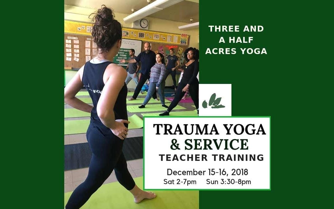 TRAUMA-INFORMED, Yoga & Diversity Training